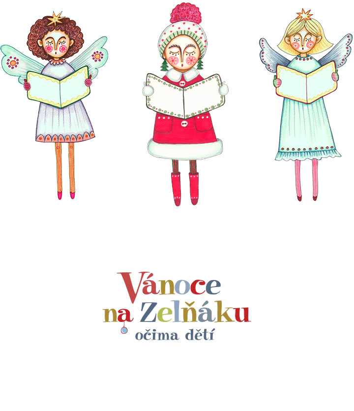 zelnak-2013-2
